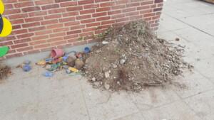 Affald efter rensning af sandkasse